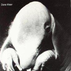 Libros de segunda mano: DORA MAAR, FOTOGRAFA. DORA MAAR; MARY DANIEL HOBSON; VICTORIA COMBALÍA. BANCAJA,1995. Lote 163424100