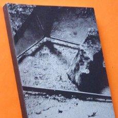 Libros de segunda mano: DAVID FERRANDO GIRAUT: THE FANTASIST - CATÁLOGO DE EXPOSICIÓN - MAC - 2011 - NUEVO. Lote 160313590