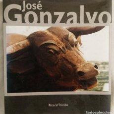 Libros de segunda mano: LIBRO ESCULTURA JOSÉ GONZALVO. Lote 162632978