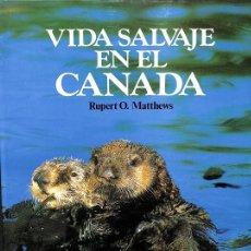 Libros de segunda mano: VIDA SALVAJE EN EL CANADÁ.. Lote 162745573