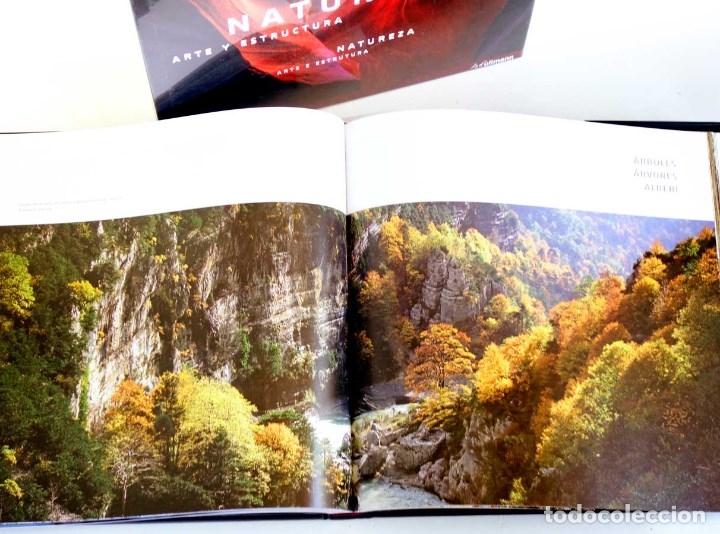 Libros de segunda mano: NATURALEZA ARTE Y ESTRUCTURA. NUEVO PRECINTADO. FOTOGRAFÍA GRAN FORMATO - Foto 3 - 176283205