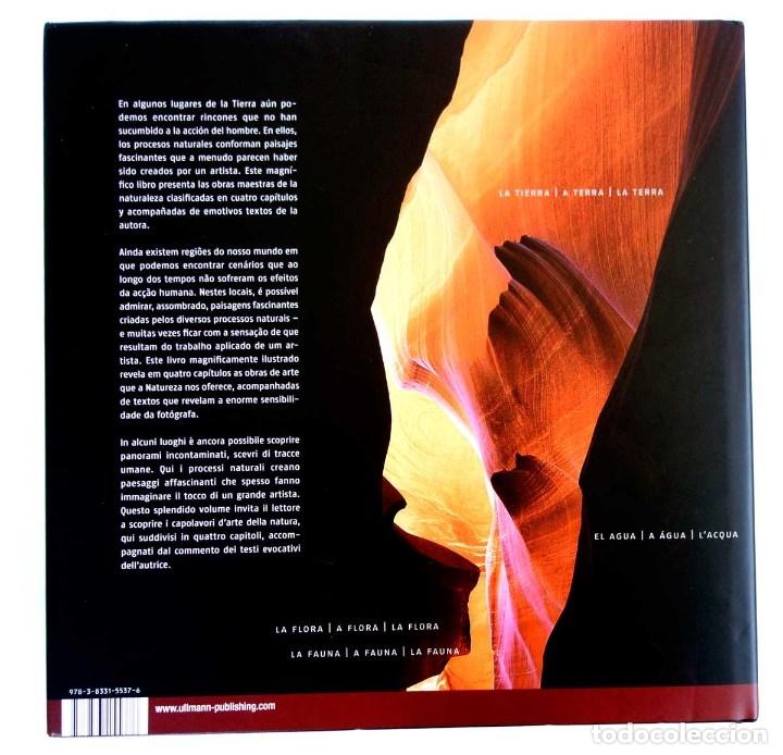 Libros de segunda mano: NATURALEZA ARTE Y ESTRUCTURA. NUEVO PRECINTADO. FOTOGRAFÍA GRAN FORMATO - Foto 5 - 176283205
