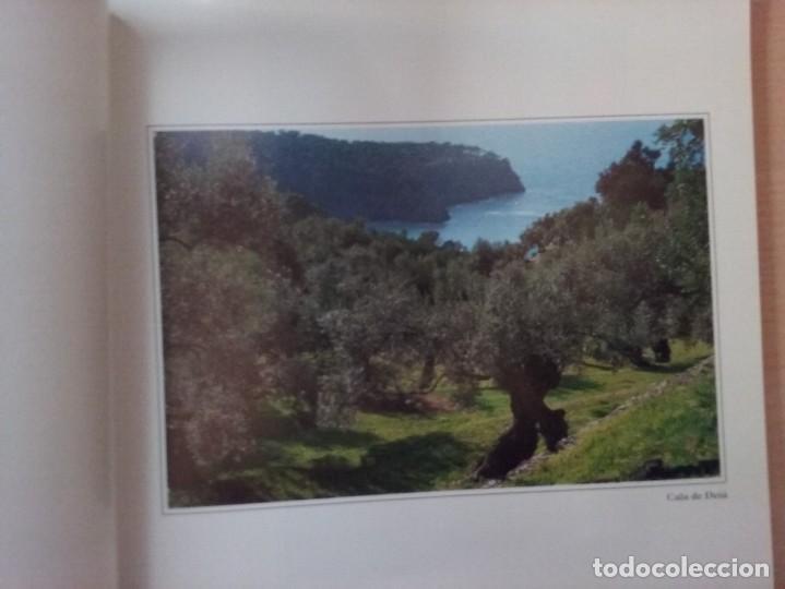 Libros de segunda mano: MALLORCA: PARAISO DE EUROPA - JAUME PALLICER - Foto 5 - 192037483
