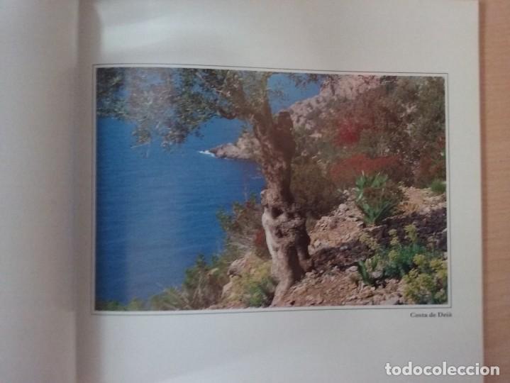 Libros de segunda mano: MALLORCA: PARAISO DE EUROPA - JAUME PALLICER - Foto 7 - 192037483