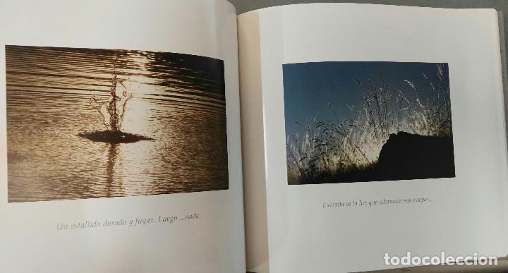 Libros de segunda mano: SORIA, UN VIAJE A LO EFIMERO. JESÚS Mª. MUÑOZ MONGE. DIPUTACIÓN PROVINCIAL DE SORIA/CAJA DUERO, 2006 - Foto 4 - 194505928