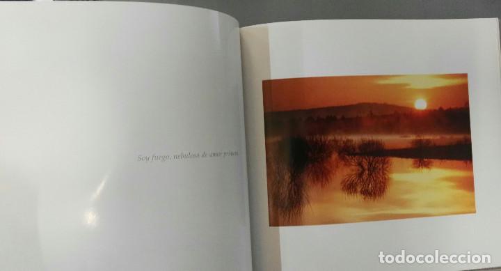 Libros de segunda mano: SORIA, UN VIAJE A LO EFIMERO. JESÚS Mª. MUÑOZ MONGE. DIPUTACIÓN PROVINCIAL DE SORIA/CAJA DUERO, 2006 - Foto 5 - 194505928