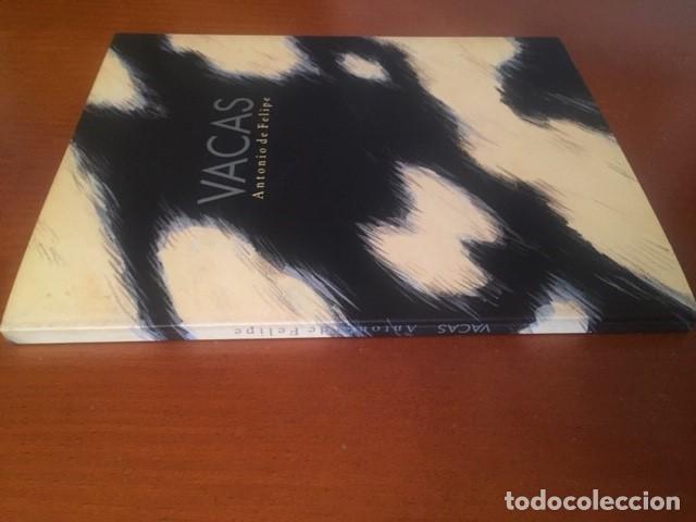 Libros de segunda mano: Antonio de Felipe, firmado y con dibujo - Foto 5 - 195362971