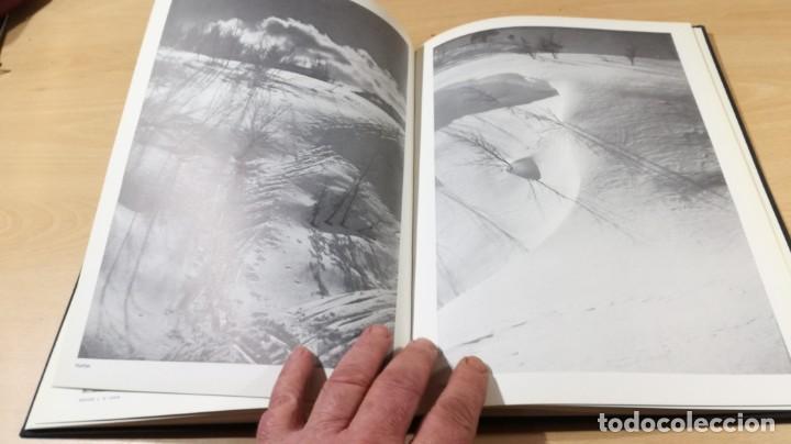 Libros de segunda mano: AURELIO GRASA - 1893 - 1972 - GALERIA COSTA 3 ZARAGOZA ARAGONQ105 - Foto 16 - 199678060
