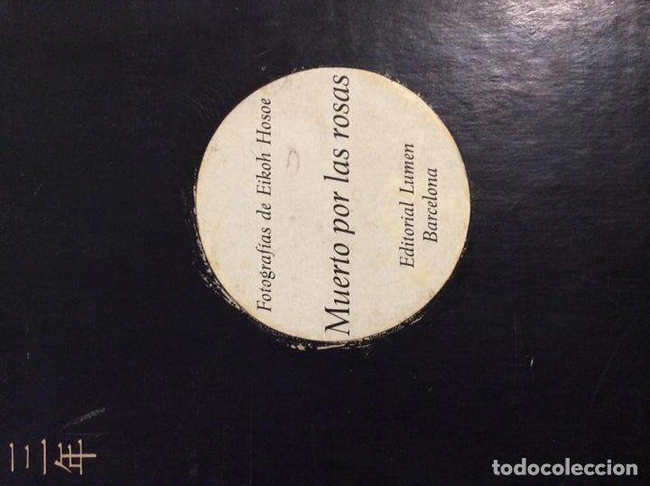 Libros de segunda mano: Muerto por las rosas - Foto 2 - 204735085