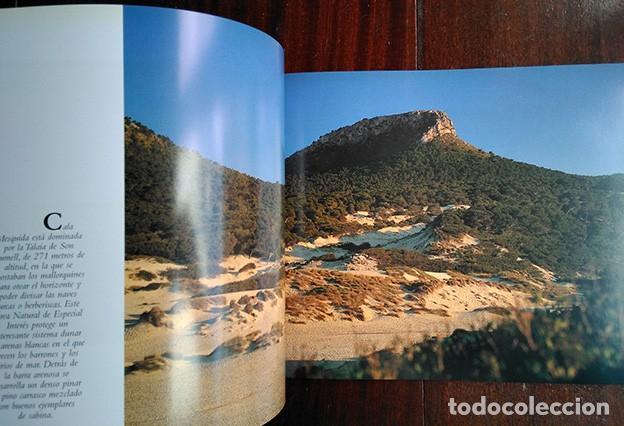 Libros de segunda mano: La naturaleza en Baleares · Mateo Castello - Foto 4 - 208423327