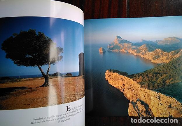 Libros de segunda mano: La naturaleza en Baleares · Mateo Castello - Foto 8 - 208423327