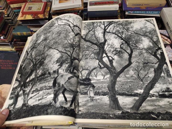 Libros de segunda mano: LES EUROPÉENS . PHOTOGRAPHIES PAR HENRI CARTIER-BRESSON. 1ª EDICIÓN 1955. PORTADA : JOAN MIRÓ - Foto 6 - 216736573