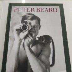 Libros de segunda mano: PETER BEARD TASCHEN 2013 EDICION LUJO GRAN FORMATO MUY BUSCADA NUEVO. Lote 218401083