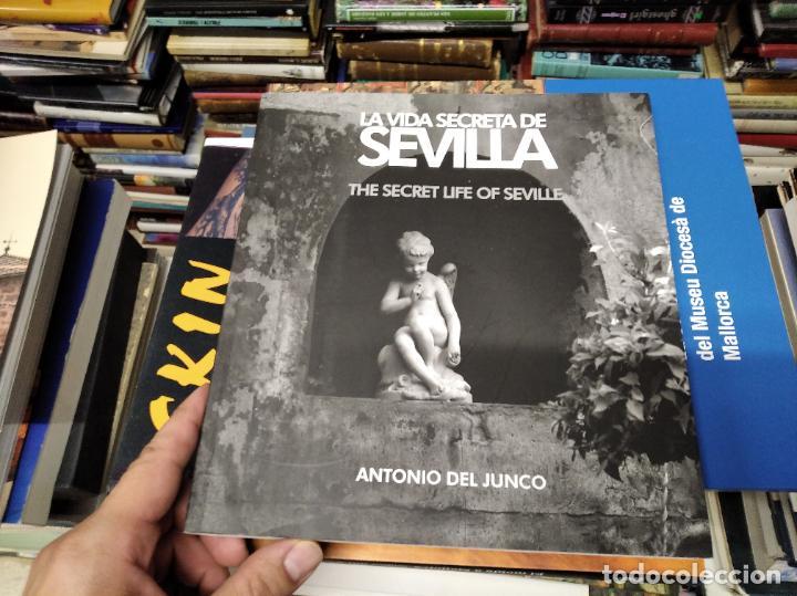 Libros de segunda mano: LA VIDA SECRETA DE SEVILLA .FOTOGRAFÍAS Y TEXTO ANTONIO DEL JUNCO . 1ª EDICIÓN 2017 . FOLCLORE - Foto 2 - 219239850