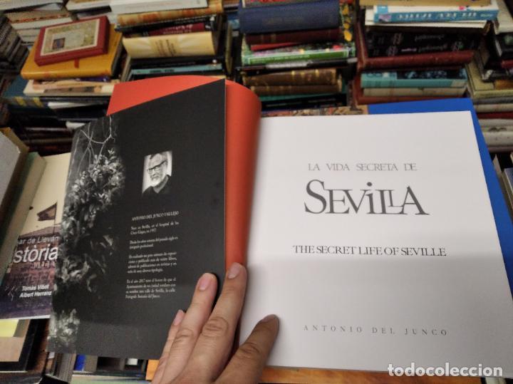 Libros de segunda mano: LA VIDA SECRETA DE SEVILLA .FOTOGRAFÍAS Y TEXTO ANTONIO DEL JUNCO . 1ª EDICIÓN 2017 . FOLCLORE - Foto 3 - 219239850
