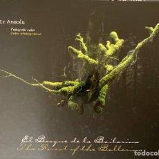 Libros de segunda mano: EL BOSQUE DE LA BAILARINA - VICENTE ANSOLA, FOTÓGRAFO CELTA. Lote 221318031