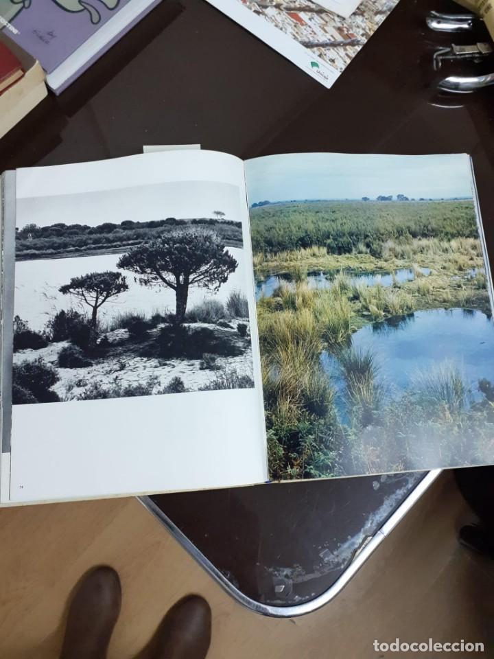 Libros de segunda mano: ANDALOUSIE SAUVAGE - VAUCHER, CHARLES A. - A-AN-483 - Foto 2 - 235145705