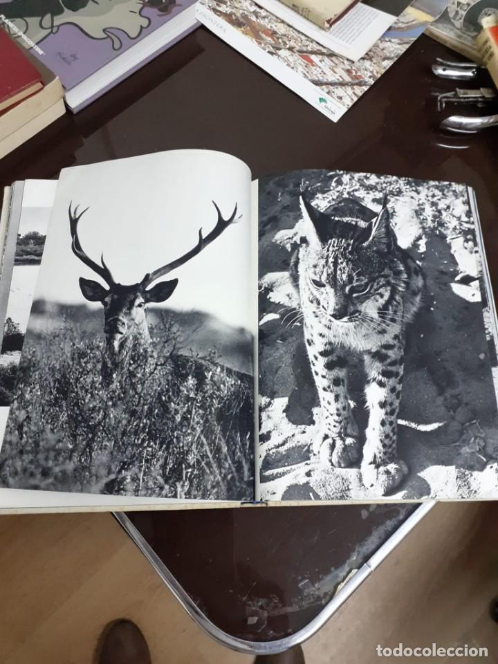 Libros de segunda mano: ANDALOUSIE SAUVAGE - VAUCHER, CHARLES A. - A-AN-483 - Foto 3 - 235145705