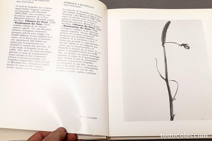 Libros de segunda mano: JOAN FONTCUBERTA - HERBARIUM - Foto 5 - 245391240