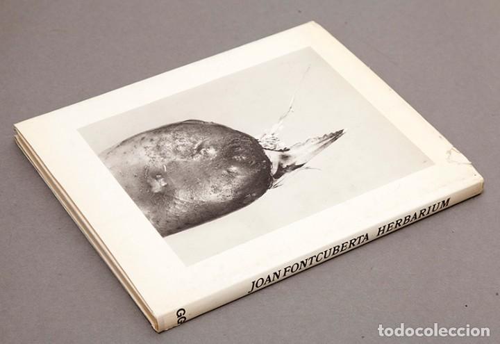 Libros de segunda mano: JOAN FONTCUBERTA - HERBARIUM - Foto 12 - 245391240