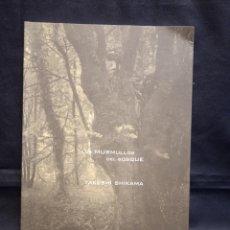 Livros em segunda mão: LOS MURMULLOS DEL BOSQUE - TAKESHI SHIKAMA - MUSEO DE ARTE CONTEMPORÁNEO GAS NATURAL FENOSA. Lote 247179125