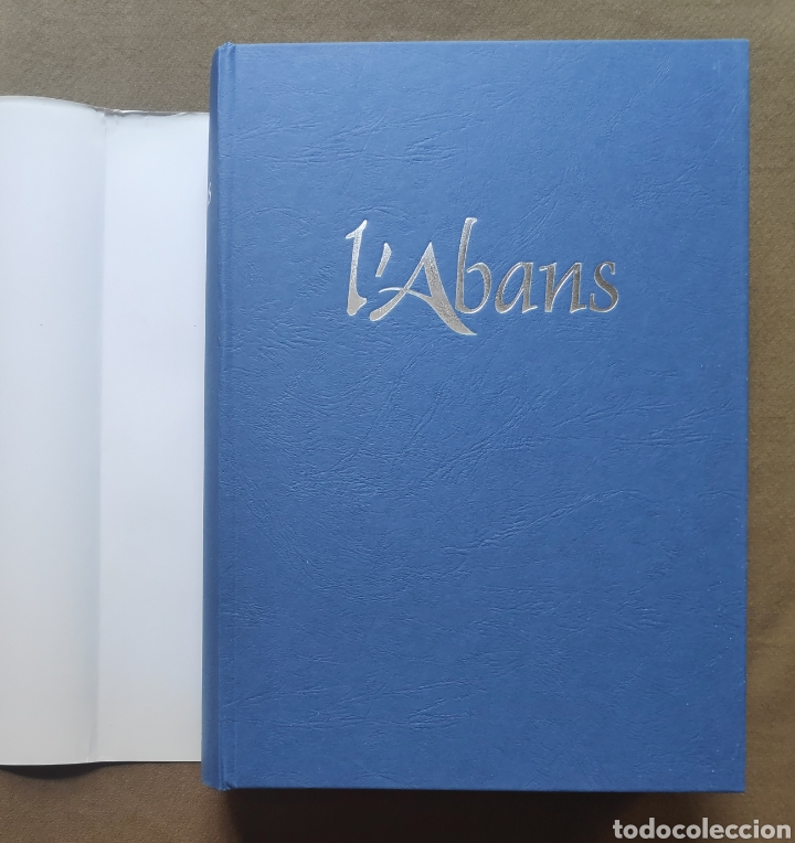 Libros de segunda mano: SITGES FOTOGRAFÍA LIBRO L ABANS RECULL GRÀFIC 1870 - 1965 - Foto 20 - 268709939