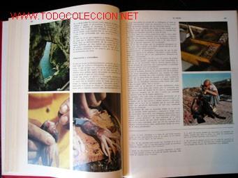Enciclopedias de segunda mano: - Foto 7 - 24834921