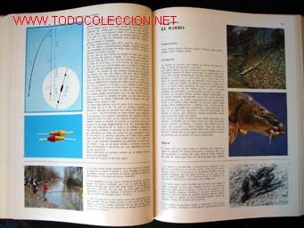 Enciclopedias de segunda mano: - Foto 6 - 24834921