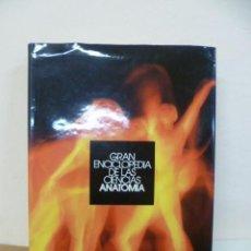 Enciclopedias de segunda mano: GRAN ENCICLOPEDIA DE LAS CIENCIAS - ANATOMIA. Lote 34909805