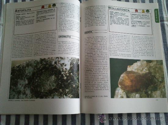 Enciclopedias de segunda mano: Los Minerales, de la A a la Z. 3 Tomos, el nº 3 sin tapas solo los fasciculos. Ed Nueva Lente. - Foto 6 - 35483941