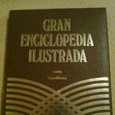 Enciclopedias de segunda mano: GRAN ENCICLOPEDIA ILUSTRADA 20 TOMOS. Lote 35673803