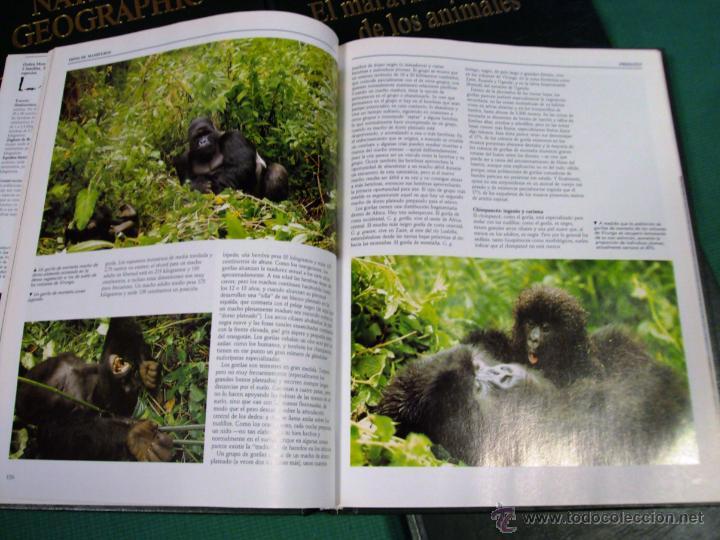Enciclopedias de segunda mano: El maravilloso mundo de los animales de National Geographic - Foto 2 - 39488097