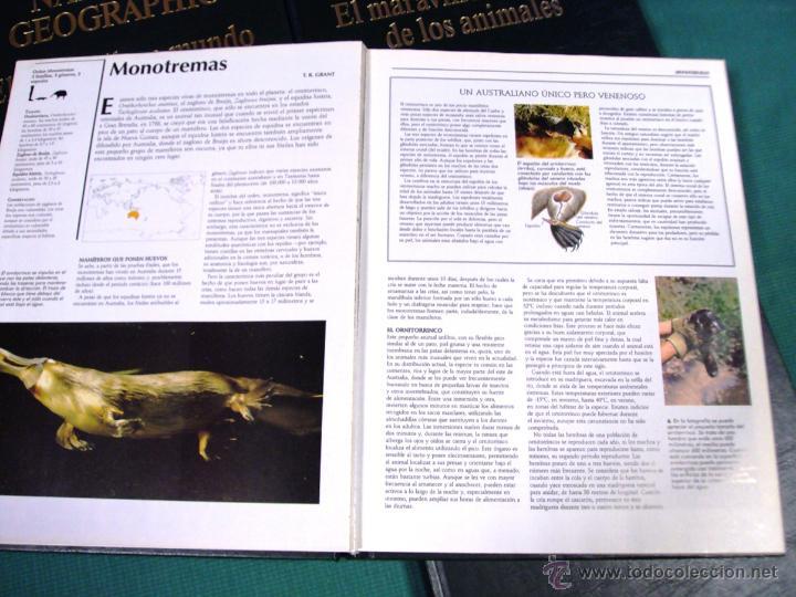 Enciclopedias de segunda mano: El maravilloso mundo de los animales de National Geographic - Foto 3 - 39488097