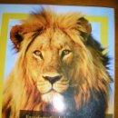 Enciclopedias de segunda mano: ENCICLOPEDIA DE LOS ANIMALES - REINO ANIMAL - NATIONAL GEOGRAPHIC - CLARIN - ARGENTINA - 2011. Lote 40946163