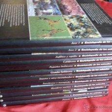 Enciclopedias de segunda mano - ENCICLOPEDIA DE LOS ANIMALES, 12 TOMOS - 43518229