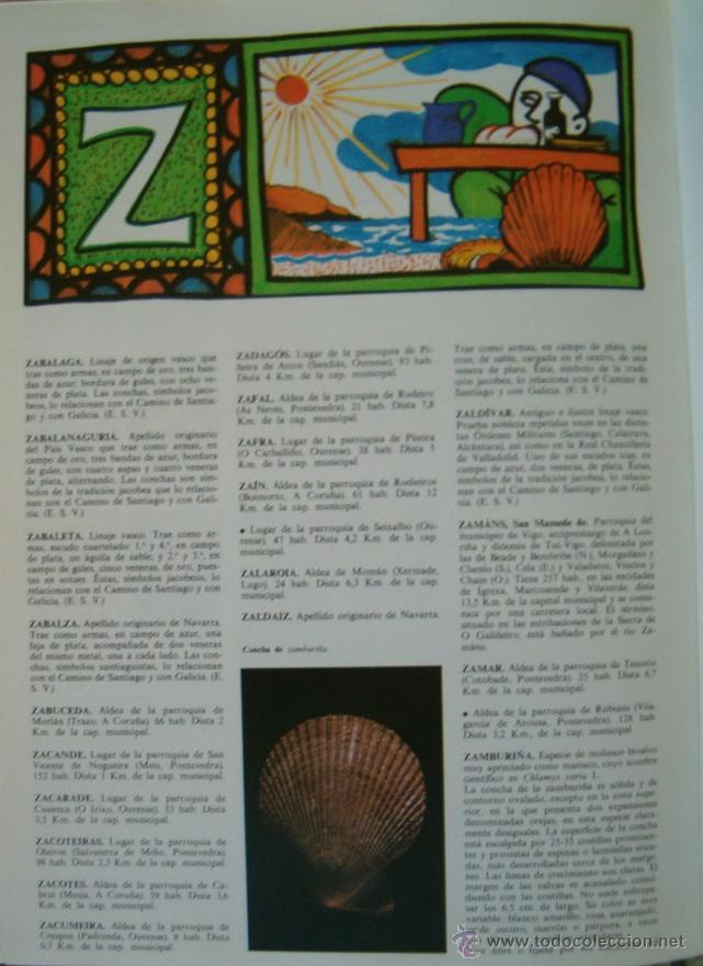 Enciclopedias de segunda mano: RAMÓN OTERO PEDRAYO (DIR.). Gran Enciclopedia Gallega. TREINTA TOMOS. RM66393. - Foto 7 - 115782227
