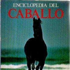 Enciclopedias de segunda mano: ENCICLOPEDIA DEL CABALLO. VV.AA. (BAJO LA DIRECCIÓN DE ELWN HARTLEY EDWARDS) EDITORIAL BLUME, 1981. Lote 50282908
