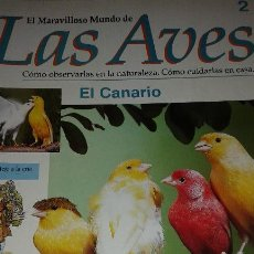 Enciclopedias de segunda mano: EL MARAVILLOSO MUNDO DE LAS AVES 1995 EDITORIAL PLANETA DE AGOSTINI. Lote 52636395