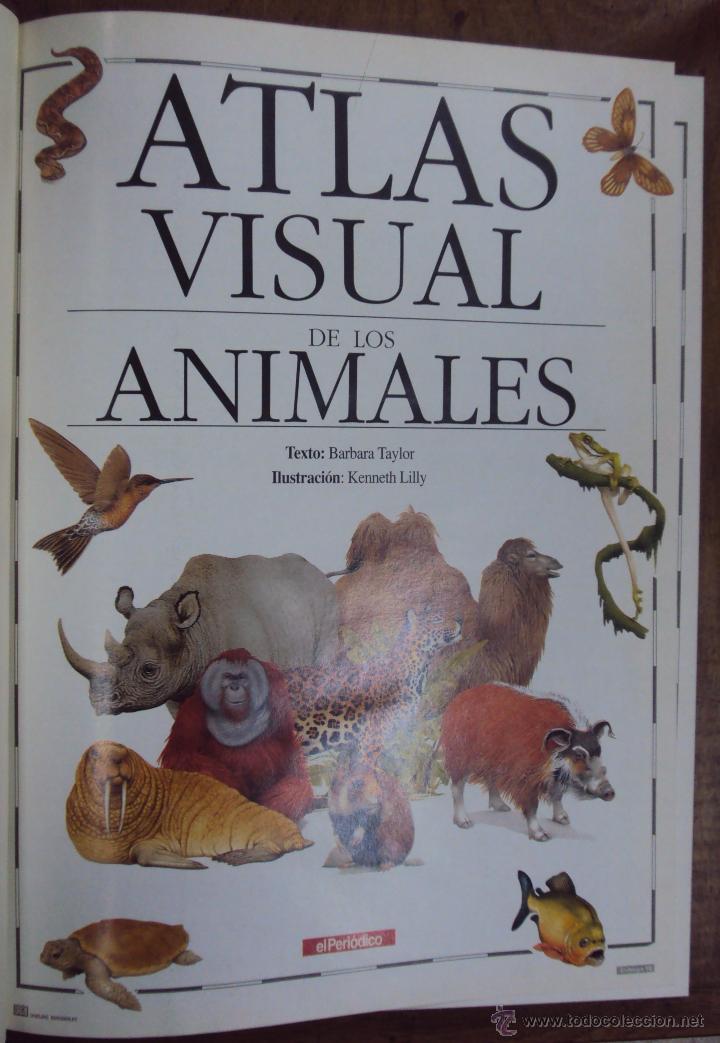 Enciclopedias de segunda mano: LOS GRANDES ATLAS VISUALES TOMOS 1 Y 2 (EL PERIODICO 1991) VER FOTOS - Foto 11 - 53079852