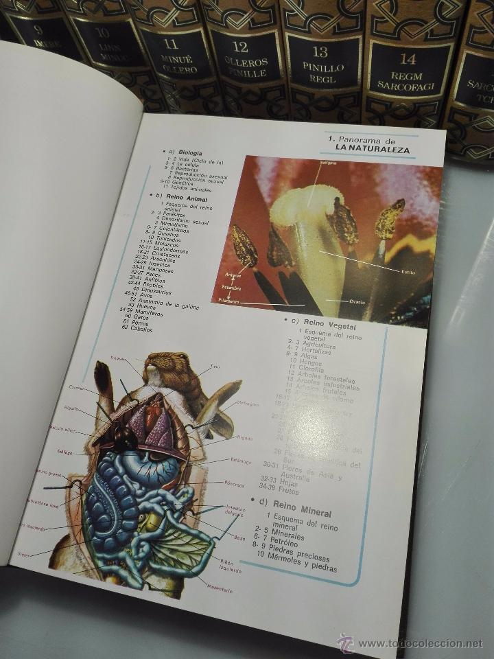Enciclopedias de segunda mano: TREMENDA ENCICLOPEDIA UNIVERSAL SOPENA COMPUESTA DE 25 VOLÚMENES - BARCELONA - 1981 - - Foto 24 - 54400179