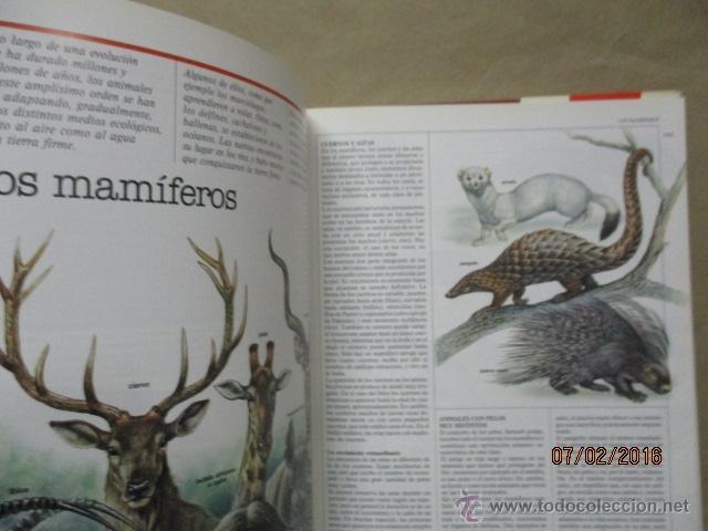 Enciclopedias de segunda mano: Descubrir nº 9 La Enciclopedia de la edad escolar - Foto 5 - 54698695