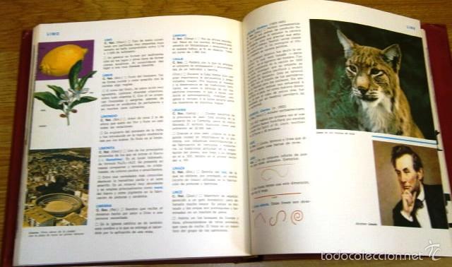 Enciclopedias de segunda mano: Enciclopedia de la Enseñanza General Básica 10T de Ed. Plaza Janés en Barcelona 1977 (Completa) - Foto 4 - 56540024