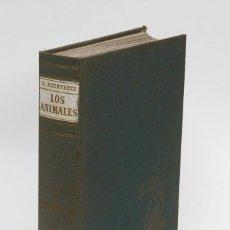 Enciclopedias de segunda mano: LOS ANIMALES - CÓMO SON, DÓNDE VIVEN, CÓMO VIVEN - VOL III AVES - SCORTECCI, G.. Lote 58196242