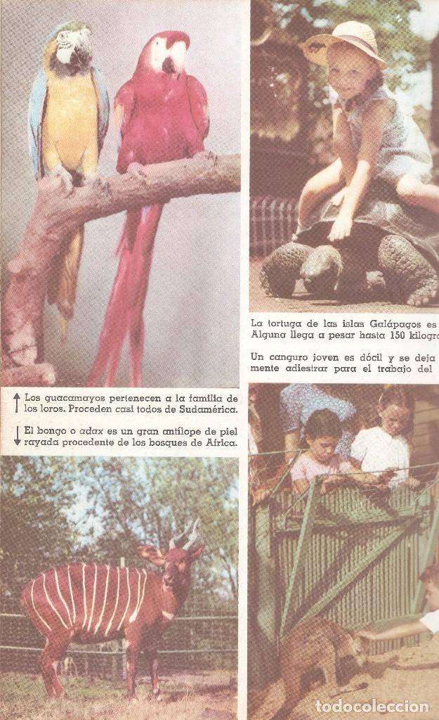 Enciclopedias de segunda mano: LIBRO PRESENTACIÓN ENCICLOPEDIA EL MUNDO DE LOS NIÑOS - SALVAT EDITORES, 1958. - Foto 5 - 62817264