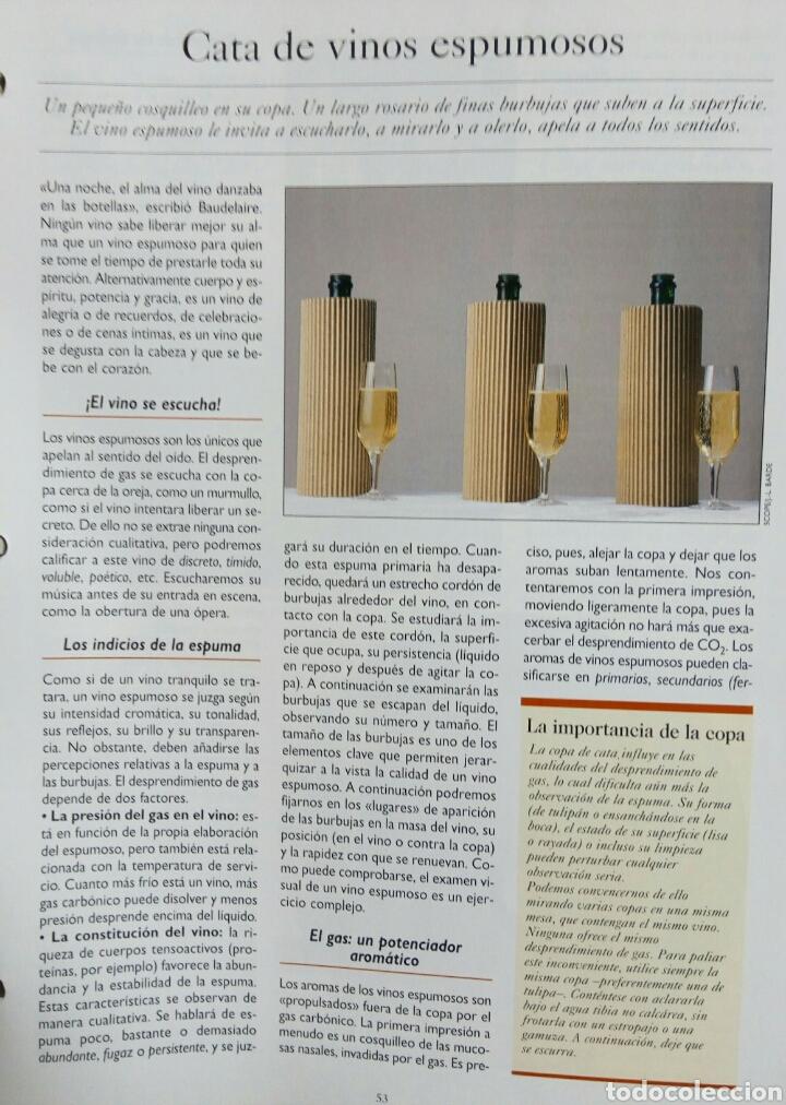 Enciclopedias de segunda mano: ENCICLOPEDIA DE FASCICULOS DE -CONOCER Y ESCOGER EL VINO- - Foto 2 - 69950622