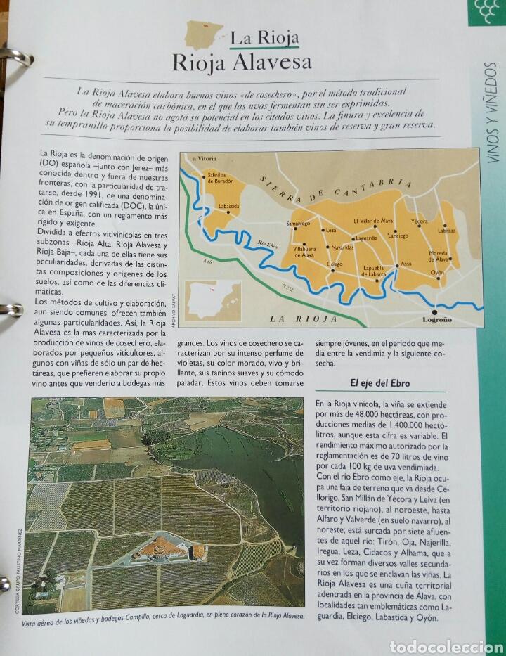 Enciclopedias de segunda mano: ENCICLOPEDIA DE FASCICULOS DE -CONOCER Y ESCOGER EL VINO- - Foto 4 - 69950622