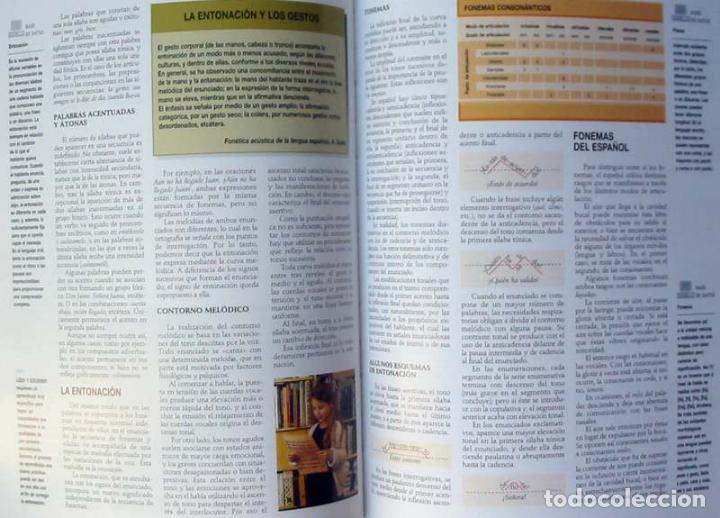 Enciclopedias de segunda mano: GRAN ENCICLOPEDIA INTERACTIVA OCEANO - ADAPTADA A LA LOGSE - 16 + 2 TOMOS - 4136 PÁGINAS - VER - Foto 11 - 74325967