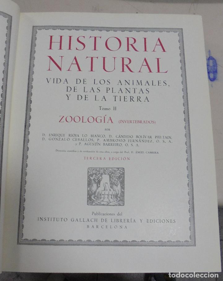 HISTORIA NATURAL. TOMO II. ZOOLOGIA (INVERTEBRADOS). 3º EDICION. INSTITUTO GALLACH. BARCELONA. 1947 (Libros de Segunda Mano - Enciclopedias)