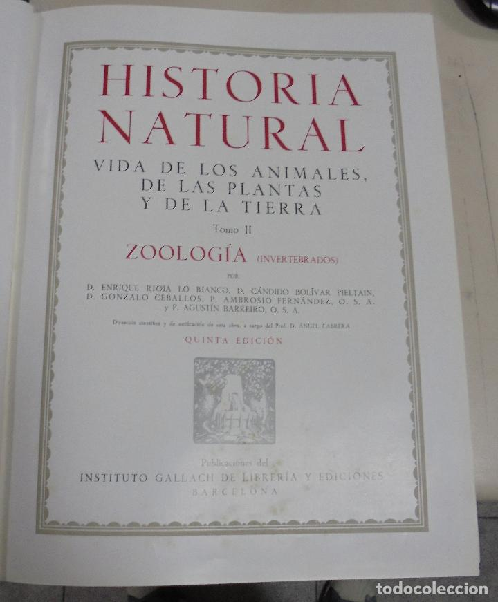 HISTORIA NATURAL. TOMO II. ZOOLOGIA (INVERTEBRADOS). 5º EDICION. INSTITUTO GALLACH. BARCELONA. 1960 (Libros de Segunda Mano - Enciclopedias)