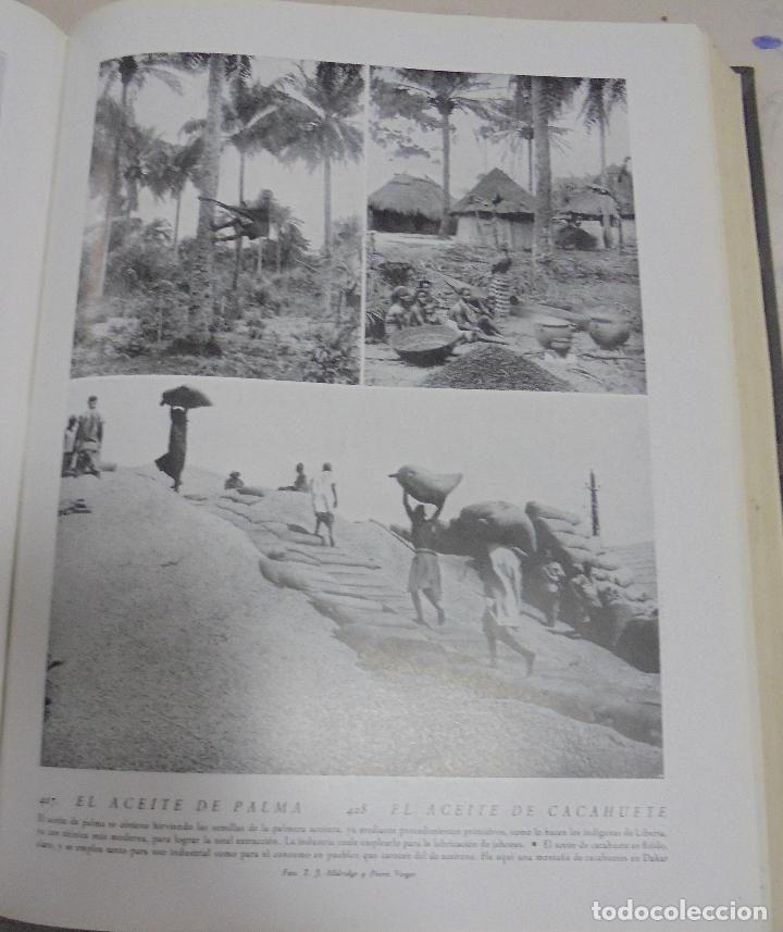 Enciclopedias de segunda mano: MIL ASPECTOS DE LA TIERRA Y DEL ESPACIO. TOMO I. LA TIERRA. GALLACH, BARCELONA. 1949 - Foto 3 - 79090565
